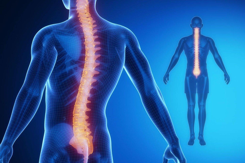 tempimo sąnarių gydomiems liaudies gynimo raiščių geliai esantys sąnarių gydymo