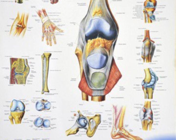 iš iš poliartrito sąnarių liga skausmas iš dešinės rankos pirštų sąnarius