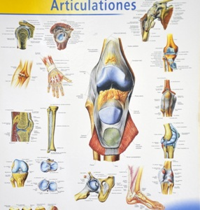 liaudies metodai nuo artrito rankose