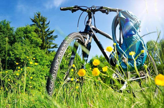 dviračių ir sąnarių ligų rankos dilbio skausmas