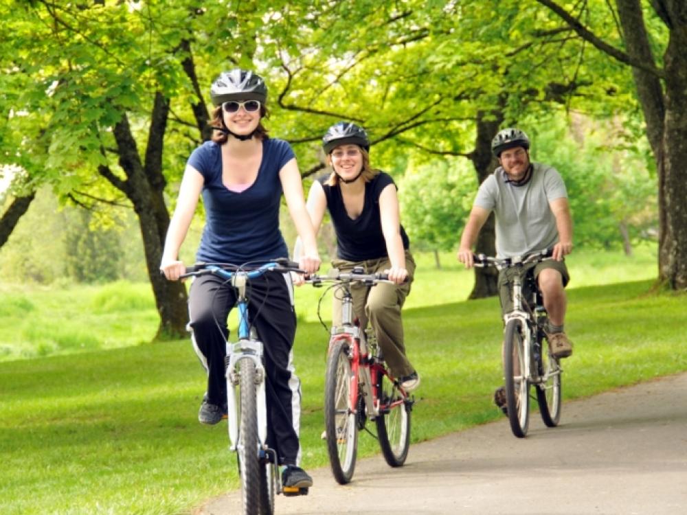 dviračių ir sąnarių ligų tepalas po traumu