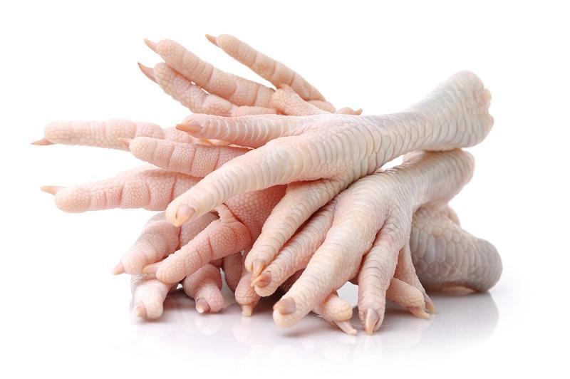 sąnarių ligomis viščiukų gvazdikų ir sąnarių gydymas