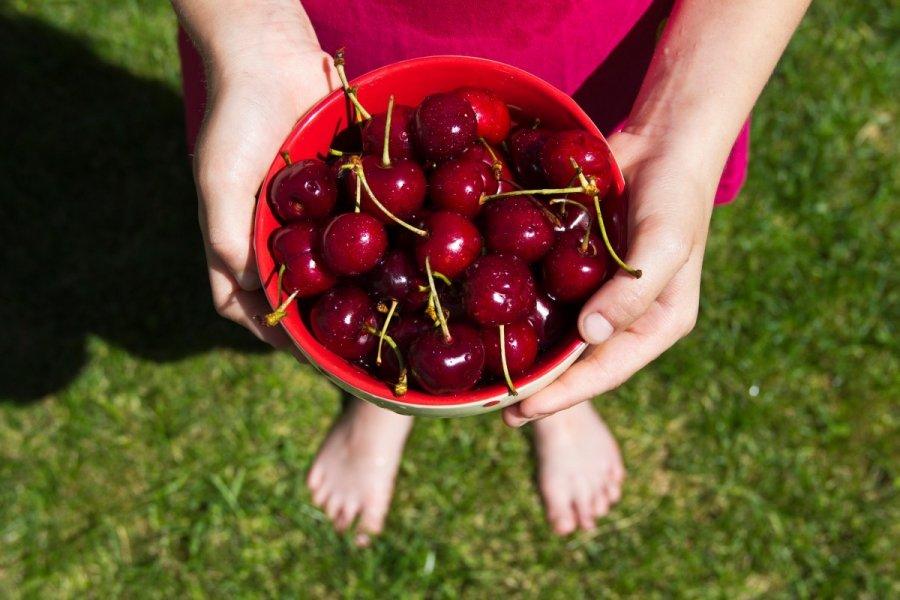 vyšnių nuo ligų sąnarių ligos pečių ir rankų sąnarių