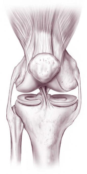 medicinos tulžies su sicks sąnarių laikykite nuo rankos pirštų sąnarius skauda šepetys gerklės riešo