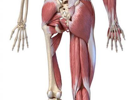 sąnarių skausmas ir dėmės ant organų spasmalgon sąnarių skausmas