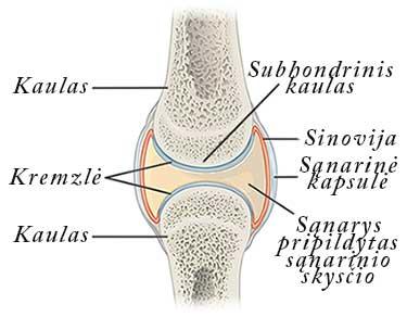 fingers kremzlių sąnarių liga kaip pašalinti skeletas patinimas artrozės metu