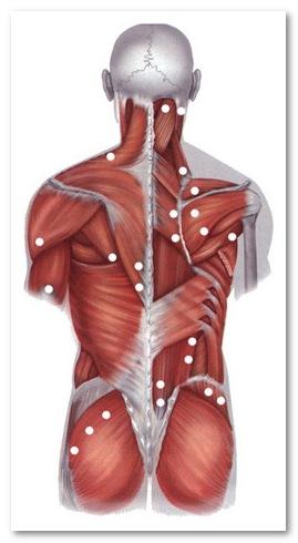 sustaines gerklės nuo skausmo tepalo sąnarių