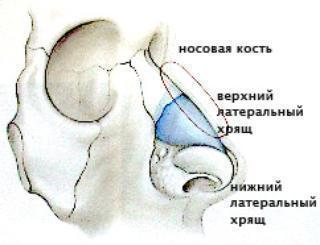 zandikaulio ir gerkles skausmas gydymas poliartritas mažų sąnarių