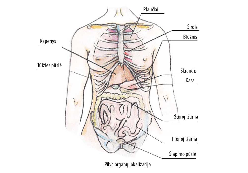 tepalas skausmo bendruose atsiliepimus koks skausmas kai tempimo peiliai peties sąnario